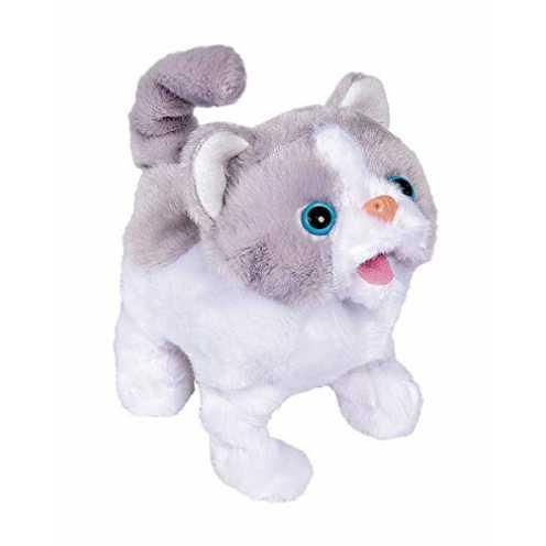 nachhaltig Simba 105893379 Chi Love Little Cat, Mehrfarbig ökologisch